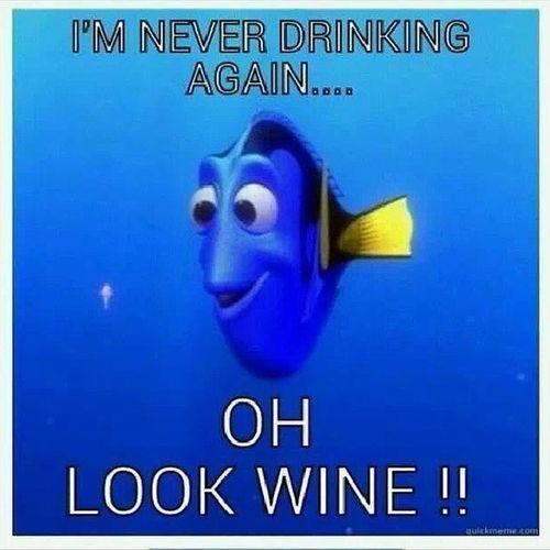 Wineho Wine Ohlook Meme dorymeme findingnemo marlin nemo dory squishy neverdrinkingagain drink classylady class classy