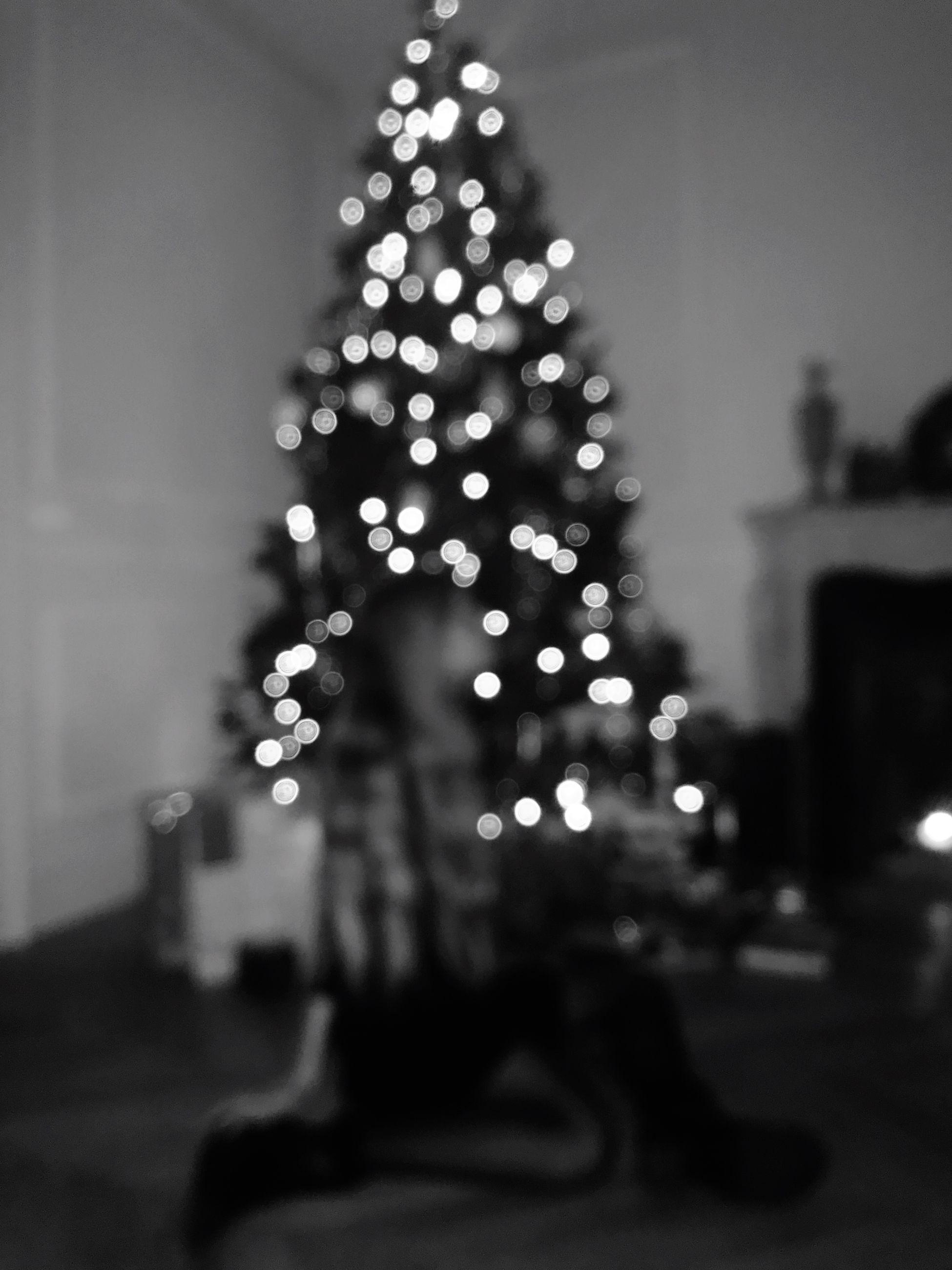 christmas, christmas tree, illuminated, christmas decoration, celebration, christmas lights, night, focus on foreground, tree, defocused, holiday - event, christmas ornament, tree topper, indoors, no people, close-up