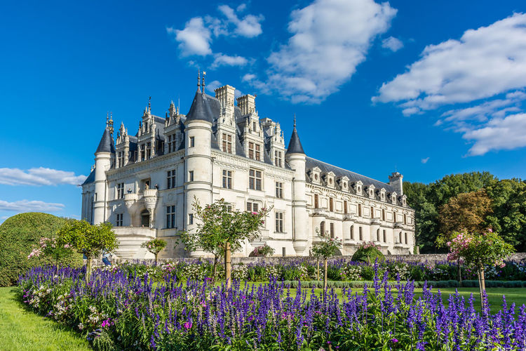 Architecture Beauty In Nature Blooming Blossom Blue Built Structure Castle Chenonceau Chenonceaux Château Château De Chenonceau Cloud - Sky Flower Fragility France Freshness Green Color Lawn Loire Loire Valley Outdoors Petal Purple Sky ValdeLoire