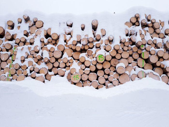 Wood Pile Wood