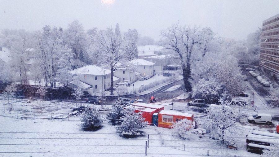 Snow ❄ First Eyeem Photo