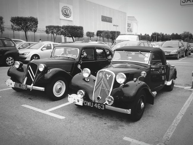 Classic Cars Coches Antiguos, Black And White