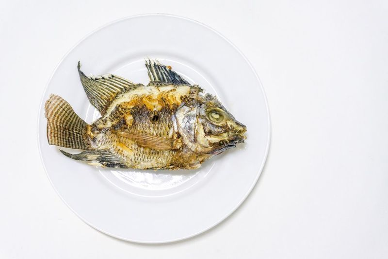 Fried tilapia in a white dish First-hand craft Fish Food Plate Craft First Top View White Tilapia Fried White Background Close-up Indoors  No People Table Studio Shot Still Life Copy Space