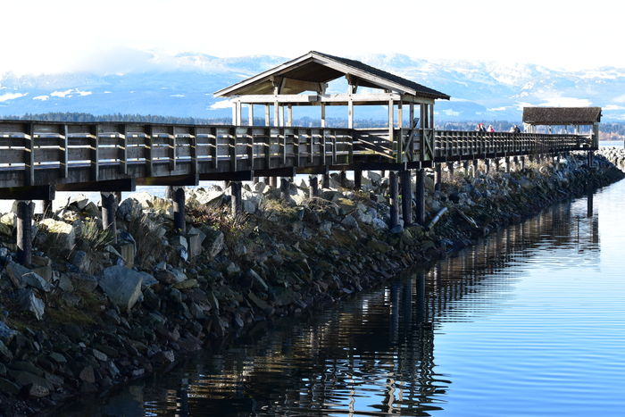 Wharf Wharfside Fishermanswharf People Walking  People Snowy Mountain Tops Lets Go. Together. Mountains In The Background Clouds And Sky Foggy Mountains Water Reflections Water_collection Reflected On Water Reflection_collection Reflections Reflections In The Water Reflection Photography Ocean Shores Seascape Nature Nature_collection Waterfront Landscape_photography BC, Canada Vancouver Island