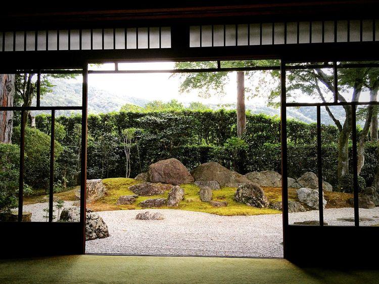 真如堂 Japan Photography Japanese Garden Kyoto,japan Kyoto Travel Destinations Tree Bridge - Man Made Structure No People Nature Indoors  Built Structure Day Architecture Beauty In Nature
