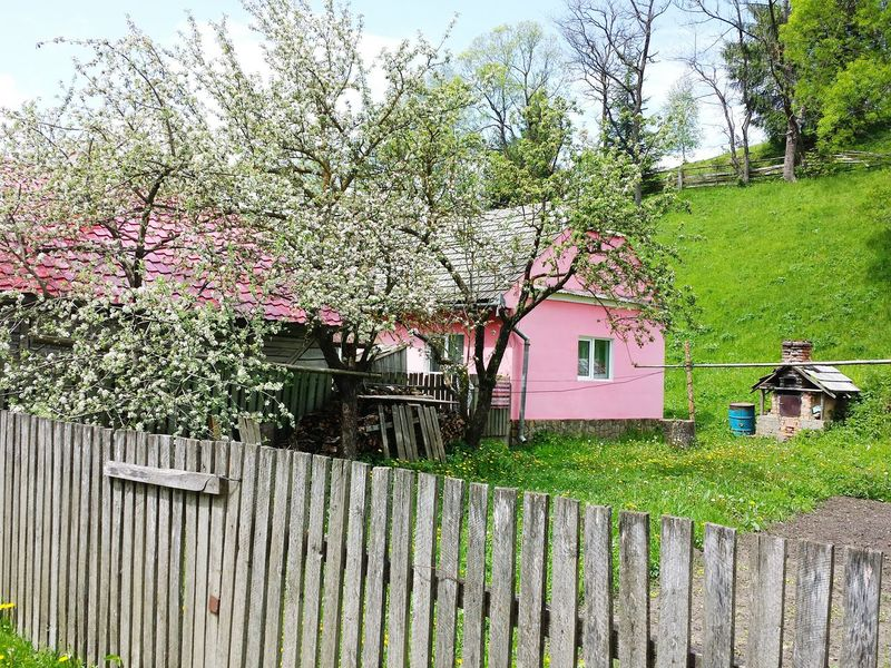 lovely house Pink Village Tree Sky Architecture Building Exterior Grass Built Structure Plant Green Color Fence Flower Tree