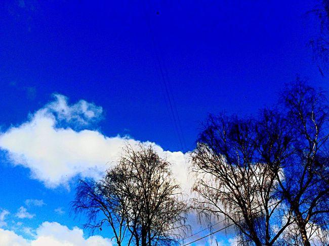 моялюбовь приятныемоменты Жизнь Color Portrait First Eyeem Photo My Love You небо облака небо пейзаж