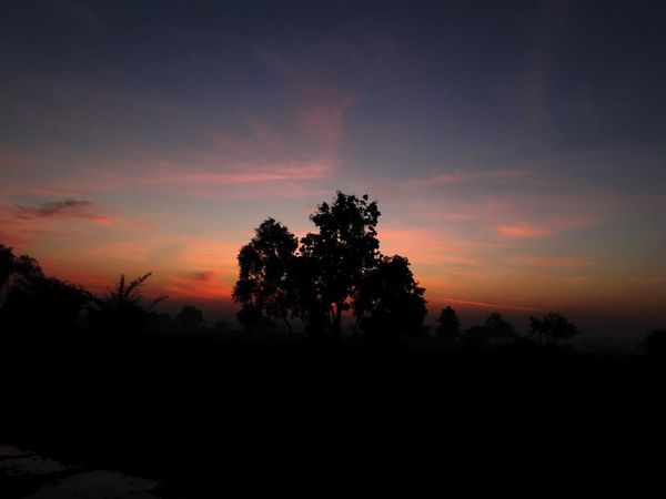 Nature Tree Beauty In Nature Sky Nature Taking Photos Enjoying Life Mobile_photographer Skylovers Beautiful Samsungphotography Sunset Sunrise Check This Out Sky Porn Sky_collection First Eyeem Photo Beauty In Nature Sunrise_sunsets_aroundworld EyeEm Nature Lover EyeEm Gallery Eyeemphotography