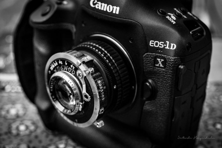 Camera Canon Close-up EOS-1DX Indoors  Monochrome No People Oldlens