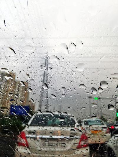 Trippy rain