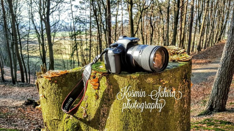 Learn & Shoot: Leading Lines Evrything In Its Place Macro Beauty Perfect Match Pastel Power Pattern Pieces Macro Photography Canon_official Wooden Woods Wood Take A Walk With Me Me, My Camera And I Canon Canon1100d Canon Camera