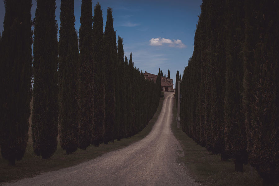 Val D'Orcia, Tuscany, Italy. Travelling through the countryside. Country Life Country Road Hills Hills And Clouds Hills And Valleys Hillside Italy Landscape Landscape_Collection Landscapes Nature Road Street The Way Forward Travel Travel Destinations Trees Tuscan Tuscany Tuscany Countryside