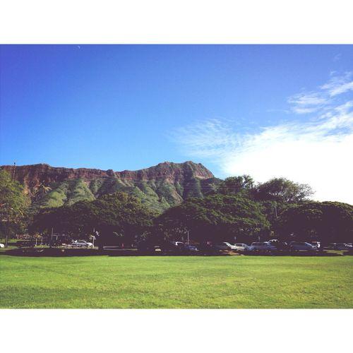 Honolulumarathon Work Funday Justgotpaid
