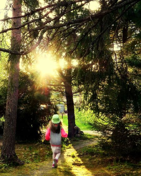 Childhood Precious Moments Of Life Ilovemygrandchildren 💜 Sunlight Tree Outdoors Nature Arcticsummer Lapland, Finland Iloveolddoors 💜life Is Good 💙 Amazing Day Nature Lapland, Finland Arctic Light Beauty In Nature Naturelovers Summer Vibes