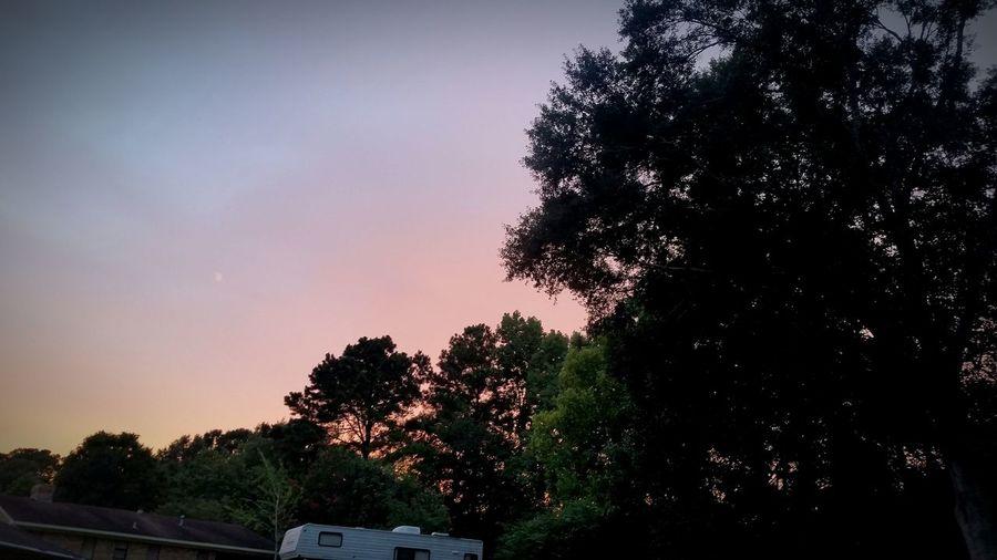 Nazhets Mississippi  Sunsetovertheriver Relaxing Sunset Pink Blue Purple Trees Green Enjoying Life Beautiful Day Beautiful Nature SummerNights