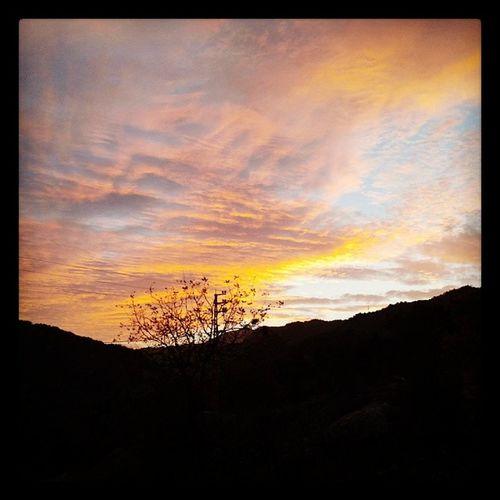 Huntingseason Winter Sunrise