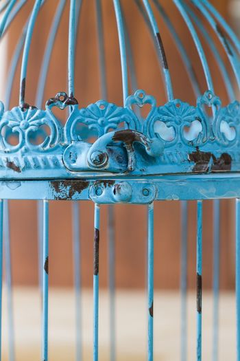 Close-up of blue birdcage
