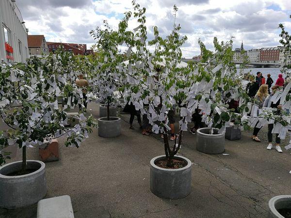 Yoko Ono Architecture Building Exterior Cloud - Sky Copenhagen Day Flower Large Group Of People Men Nature Outdoors People Plant Sky Wish Tree Wish Tree Garden
