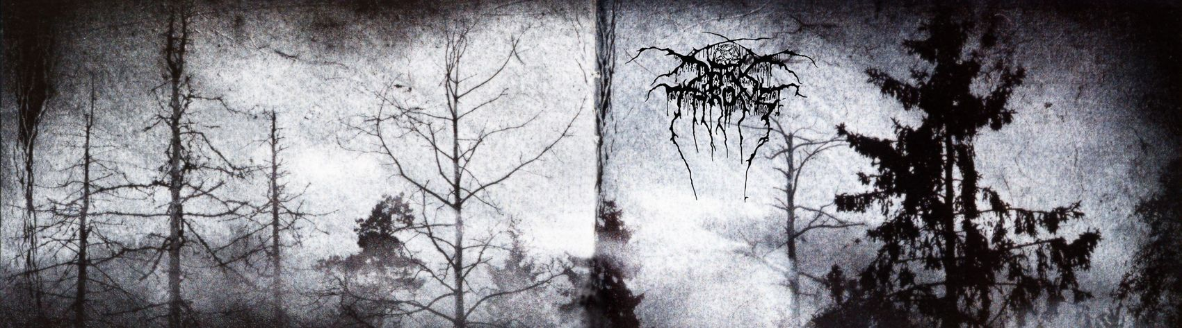 Black Metal Close-up Darkthrone Day Indoors  Nature No People Tree