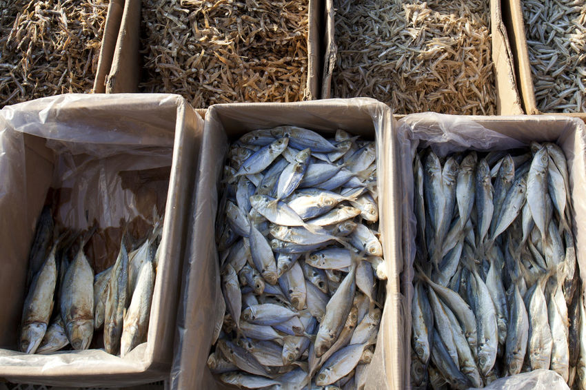 Salted Fish at Kamal Market Jakarta City Close-up Day Dried Fish  Dried Fish  Food Food And Drink For Sale Freshness Healthy Eating Jakarta Market Market Stall Nature No People Outdoors Retail  Retail  Salted Fish Sardine Seafood Smoke