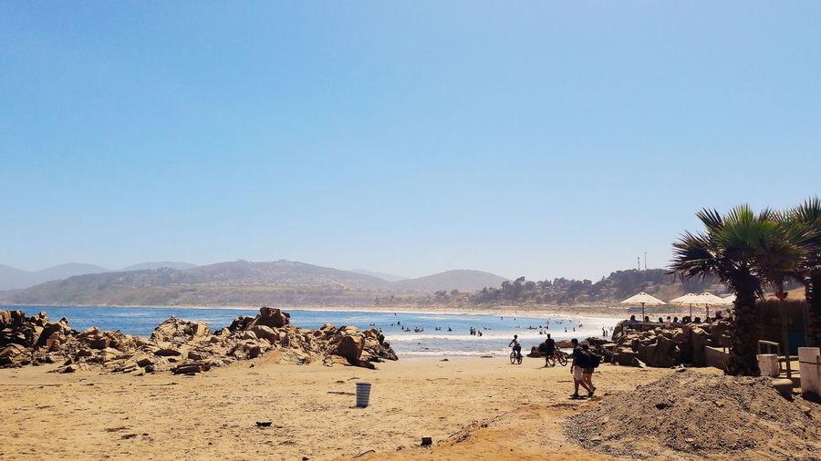 Beach Large
