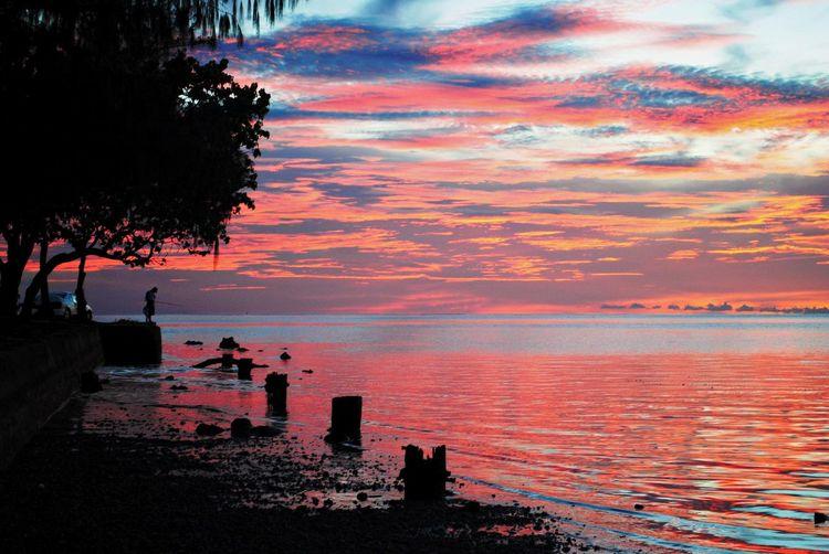 Beautiful sunset in Saipan, Northern Mariana Islands Sky Sunset Water Cloud - Sky Beauty In Nature Orange Color Scenics - Nature Sea Tranquility Tranquil Scene Nature Tree Beach No People Plant Land Silhouette Idyllic Outdoors Saipan Saipan Photos Saipan Sunset Northern Mariana Islands