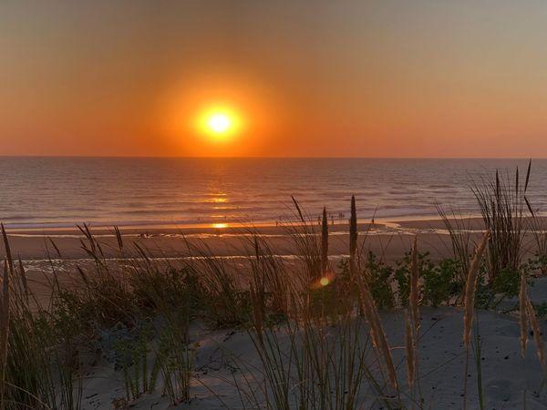 Water Sky Sea Horizon Over Water Sunset Horizon Beauty In Nature Scenics - Nature Beach Tranquility Tranquil Scene Sun Nature Land Idyllic Orange Color Sunlight No People