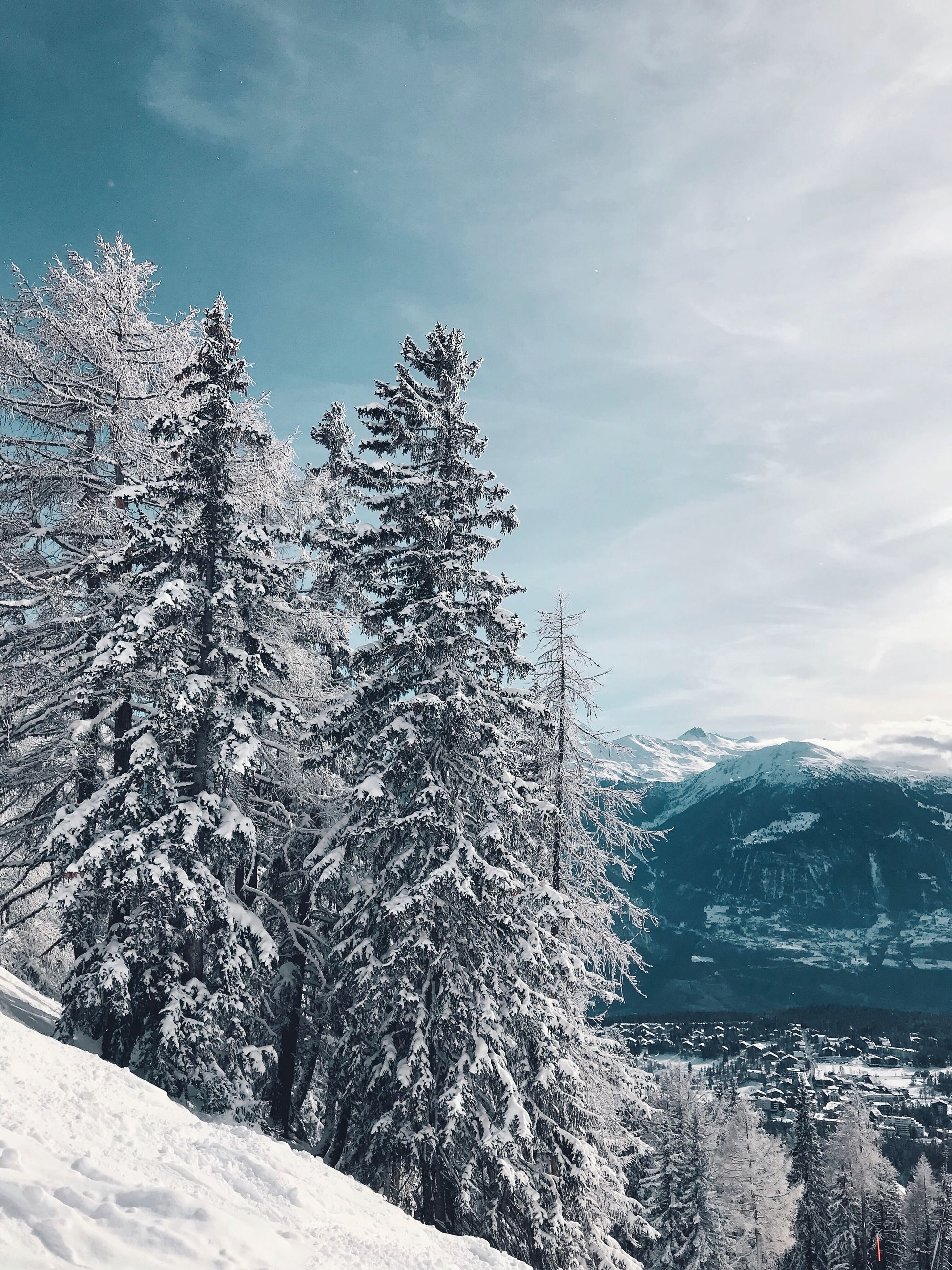 snow, winter, cold temperature, tree, beauty in nature, mountain, scenics - nature, nature, sky, plant, tranquility, tranquil scene, cloud - sky, no people, day, covering, environment, frozen, landscape, outdoors, snowcapped mountain, pine tree, coniferous tree, range