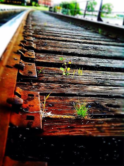 One of my favorite photos I've taken. Railroad Railroad Track Lifefindsaway Textures And Surfaces