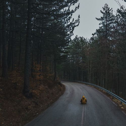 Rear view of man sitting on road amidst trees in forest