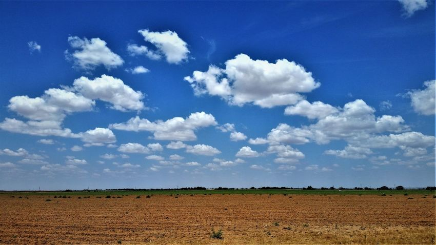 Lubbock Lubbock, TX Agriculture Animal Themes Beauty In Nature Blue Cloud - Sky Day Field Landscape Nature No People Outdoors Plough Rural Scene Scenics Sky Tranquil Scene Tranquility