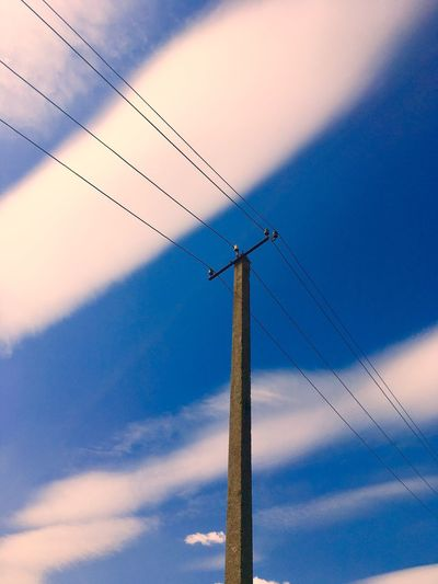 Sky Low Angle View Cloud - Sky Technology Cable Connection No People Bird Communication Electricity  Large Group Of Animals Nature Sunset Blue Antenna - Aerial Animal Beauty In Nature Day Vertebrate Animal Themes