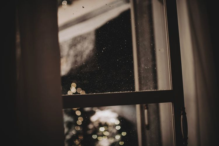 View of cat seen through glass window