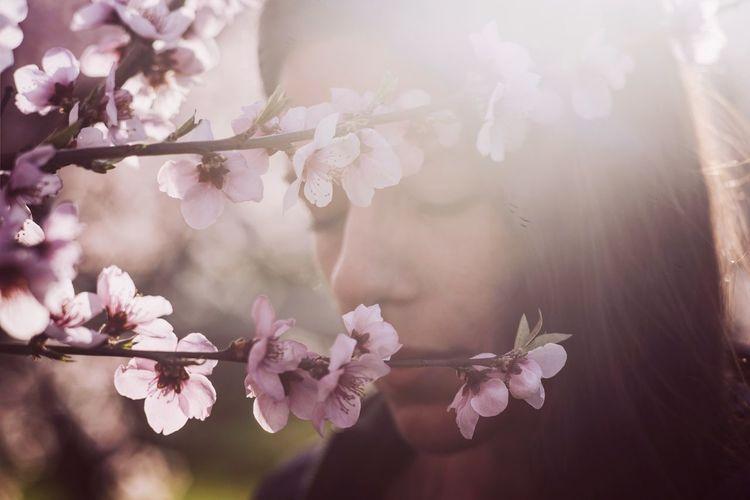 Cherry Blossoms Cherry Blossom Cherry Tree Flowers Pink Color Portrait Woman Woman Portrait Woman Power