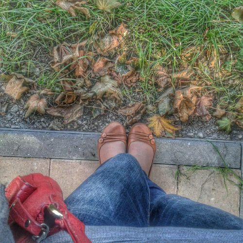 Selfyног Осень, но пока еще теплая!
