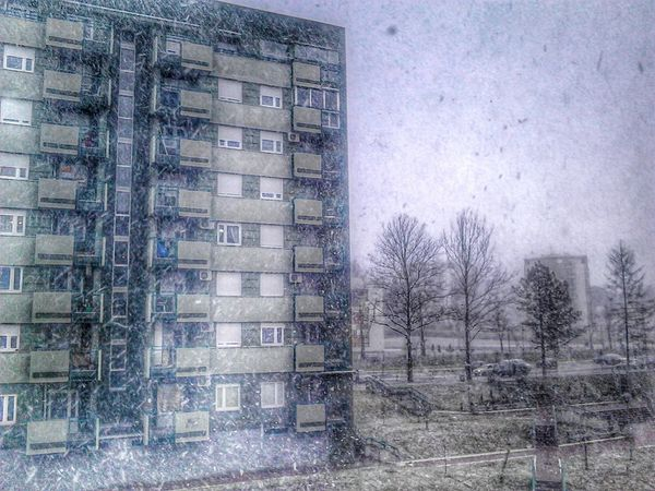 Snow Day It's Snowing ! Snow Blizzard love snow ??? HDR