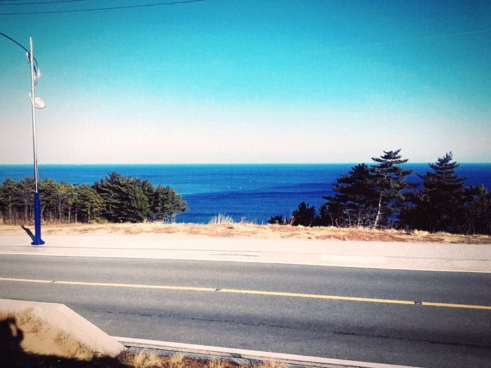 Sea Horizon Over Water Road Clear Sky Blue Scenics Beauty In Nature Sunlight Water Beach Tree Day Nature Transportation Sky Outdoors The Way Forward No People