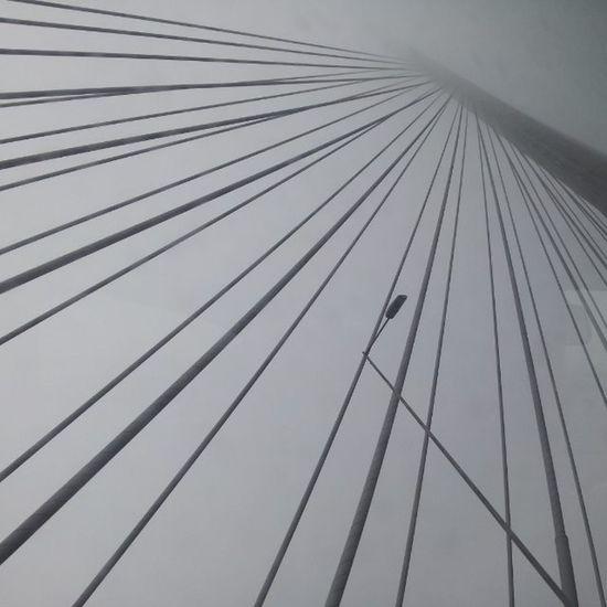 MostnaAdi Fog
