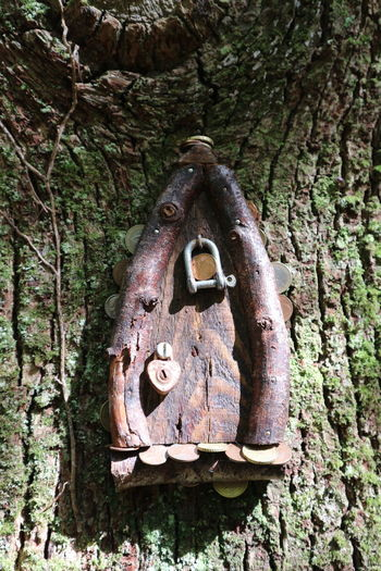 Close-up of old rusty metal hanging on tree trunk