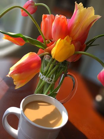 Coffee Morning Tulips Petal Nature Bouquet Flowers ☕️🌷🌷🌷