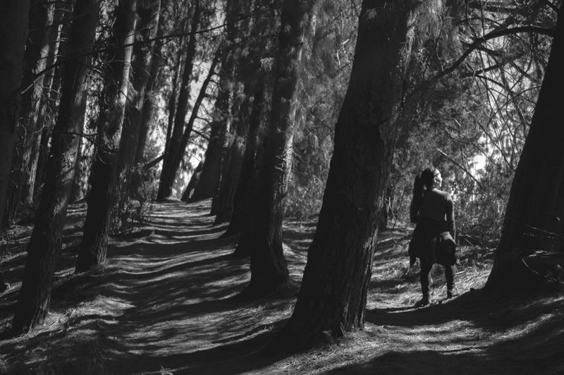 Blackandwhite Blancoynegro Bnw Woods Forest Her She Tree Forest Full Length Tree Trunk Tree Area Shadow Pinaceae WoodLand Sunlight Walking Hiker