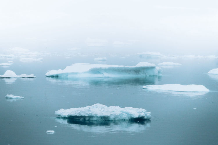 Cold Temperature Water Winter Tranquility Ice Tranquil Scene Scenics - Nature Frozen Snow Beauty In Nature Nature Day Environment Reflection Glacier No People Waterfront Sea Outdoors Iceberg Floating On Water Lagoon Melting Greenland