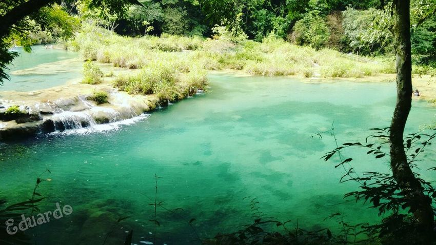 Nature Green Color Beauty In Nature Water Nature Reflection Tranquility Travel Destinations Scenics EyeEm Taking Photos Getting Inspired No People Tranquil Scene River Photooftheday Picoftheday Nature_collection Guatemala Motivated ♡ Beauty In Nature EyeEm Best Shots Vacationtime Cobán Guatemala View