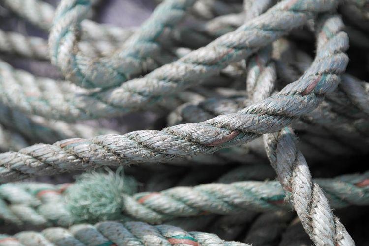 Full frame shot of ropes at harbor
