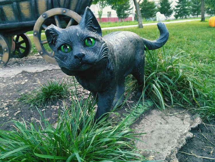 I have many black cat photos, doesn't it?😓 Animal Representation Day Sculpture Art And Craft Statue Outdoors Park - Man Made Space No People Nature Animal Themes Black Cat