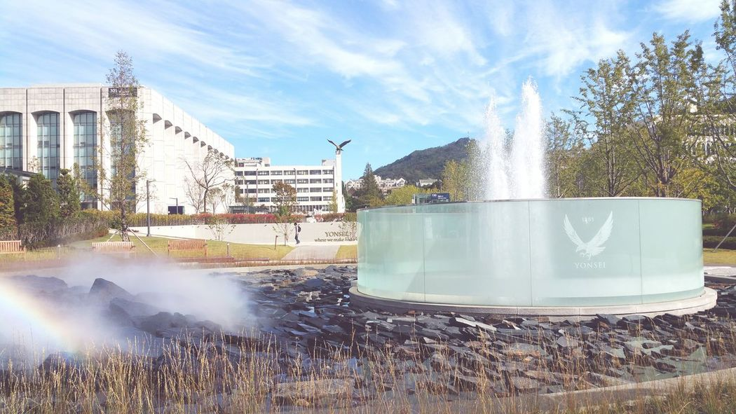 Spraying Splashing Water Fountain Heat - Temperature Motion City Building Exterior Tree Outdoors Military Power In Nature No People Day Natural Disaster Sky Seoul Korea Architecture Tree City YonSei University Yonsei 연세대학교