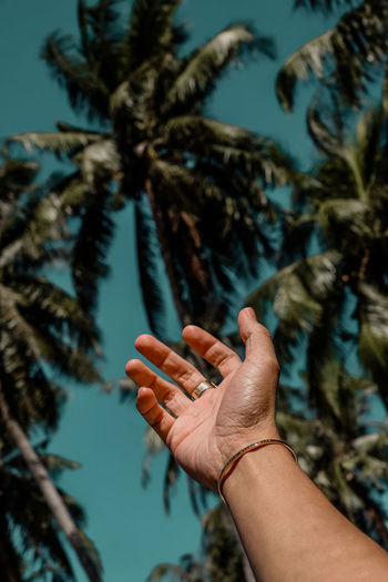 Low angle view of cropped hand gesturing against palm tree