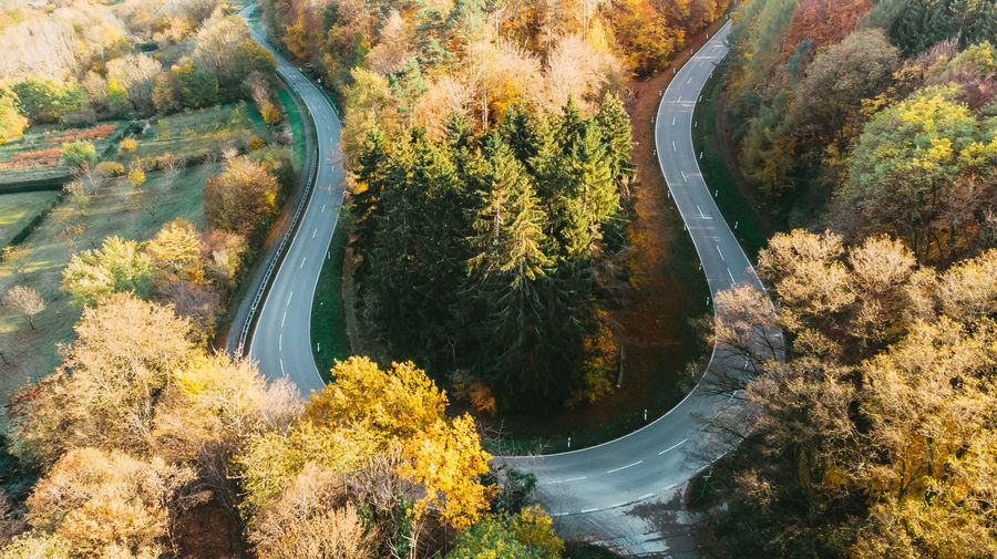 High angle view of a road amidst trees during autumn