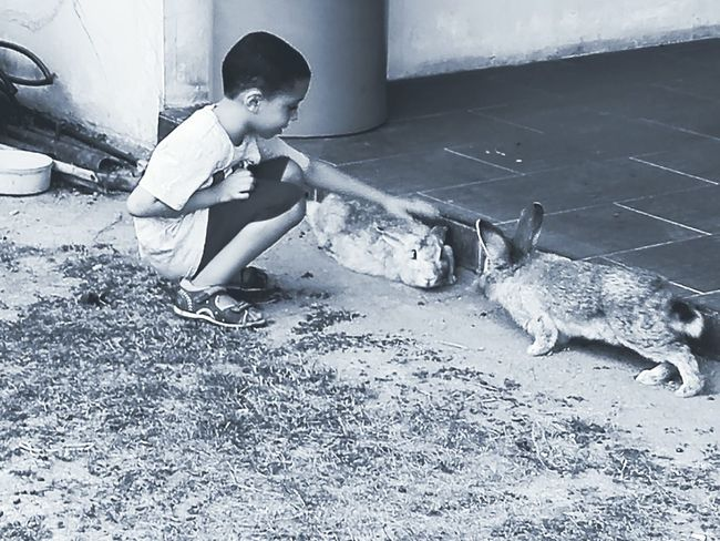One Person Childhood One Boy Only People Outdoors Day Black And White Photography Black And White Black&white Children Only Child Animals Of Eyeem Rabbit 🐇