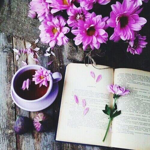 Vintage Weheartit Tumblr Verygood Tea Books Book Haert Pink Purple